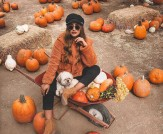What to Wear: Pumpkin Picking