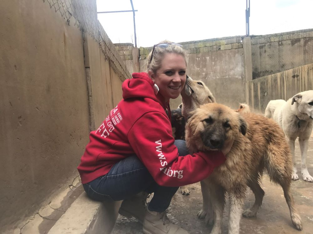 SPCAI staff and dog rescue: pets and mental health - pets for depression and anxiety - how do dogs help with anxiety - dogs and emotional health